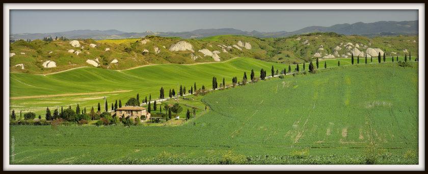 (Italiano) Marchio per vini contenente indicazioni geografiche